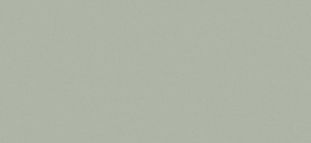 Сайдинг Cedral Smooth C06 Дождливый океан